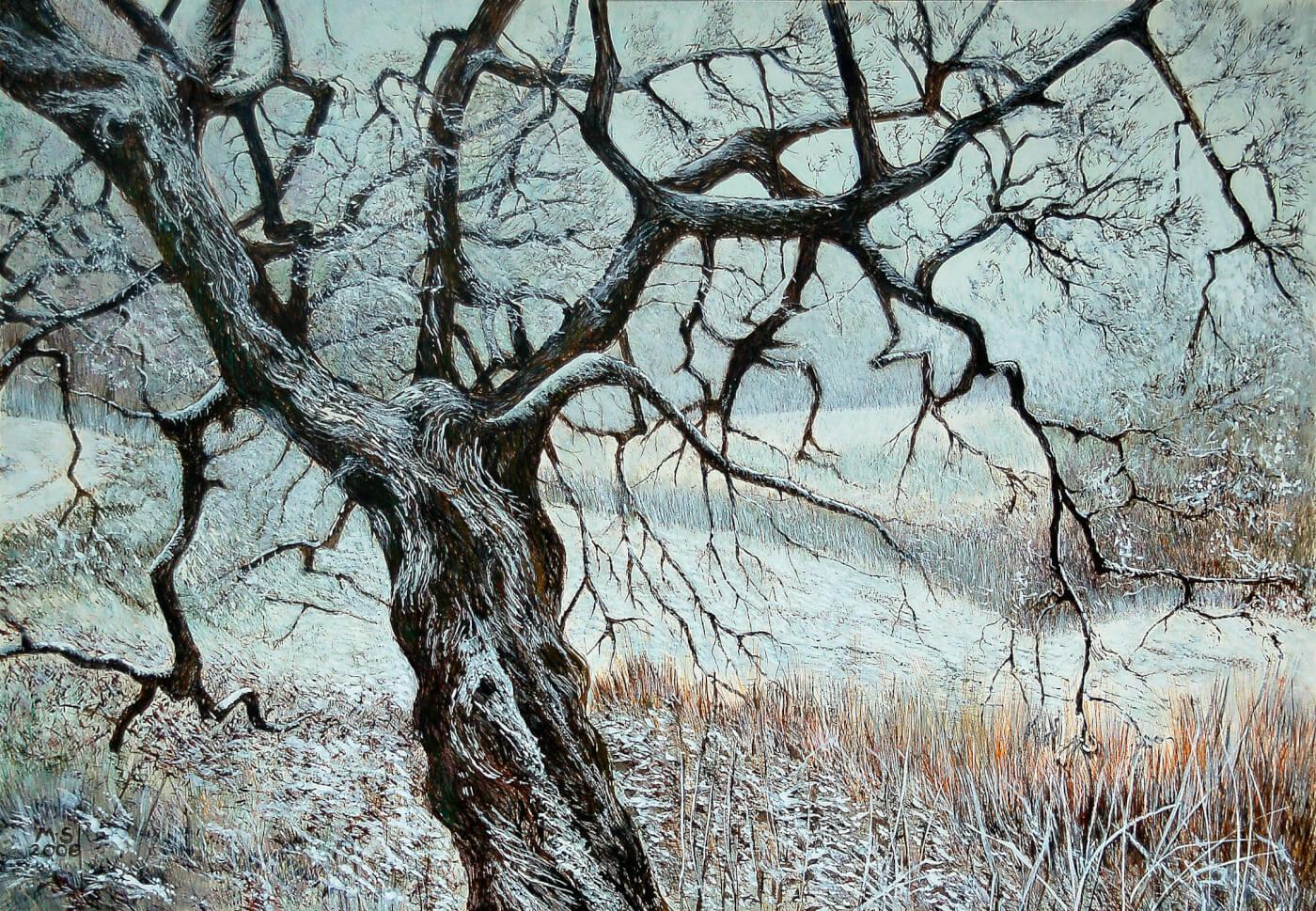 Winterbild, BaumJenisch Park, Natur, Landschaftsmalerei