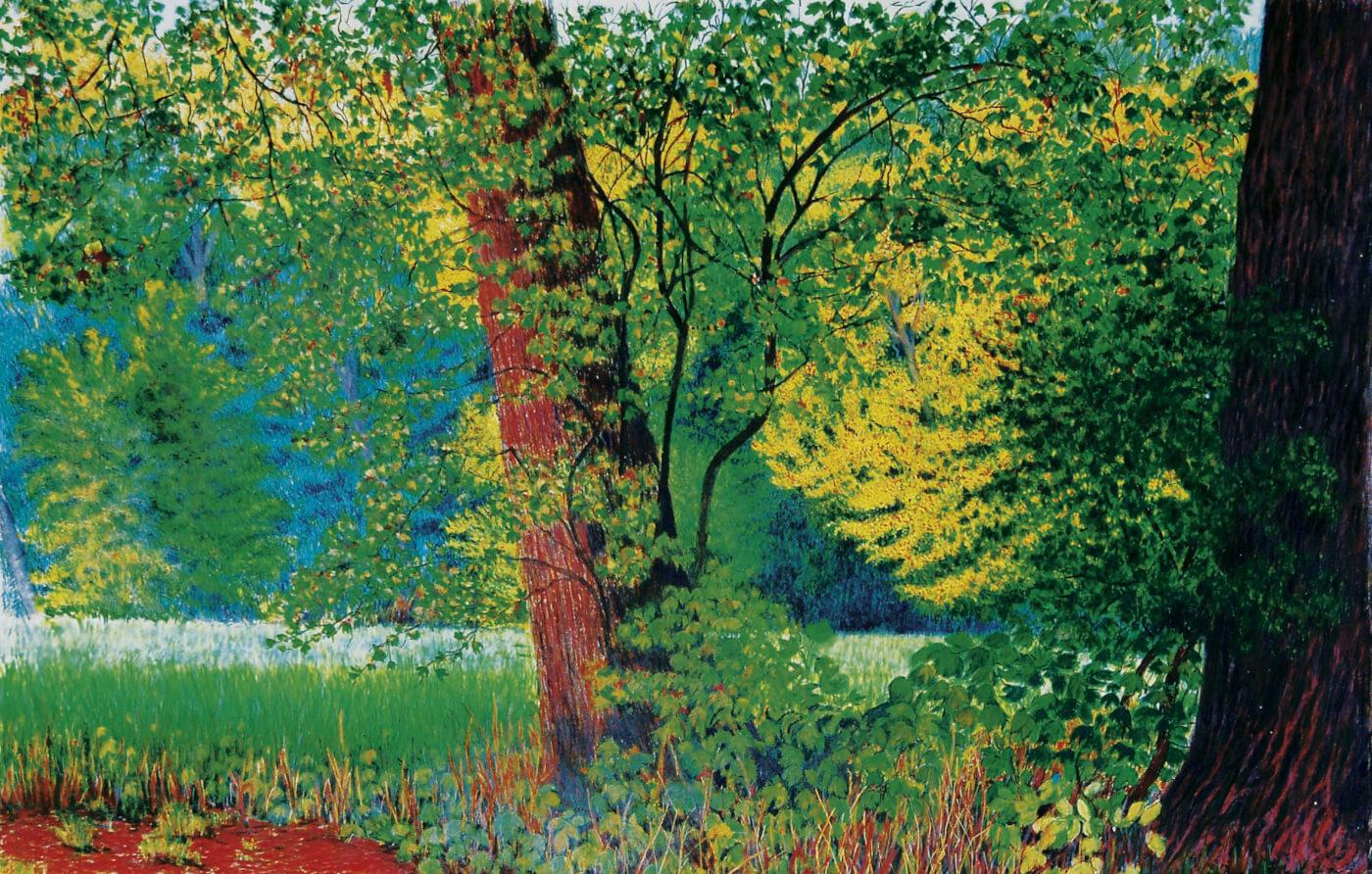 Natur, Malerei, Sommerbild, painting, Tempera, Hamburg, Jenisch Park