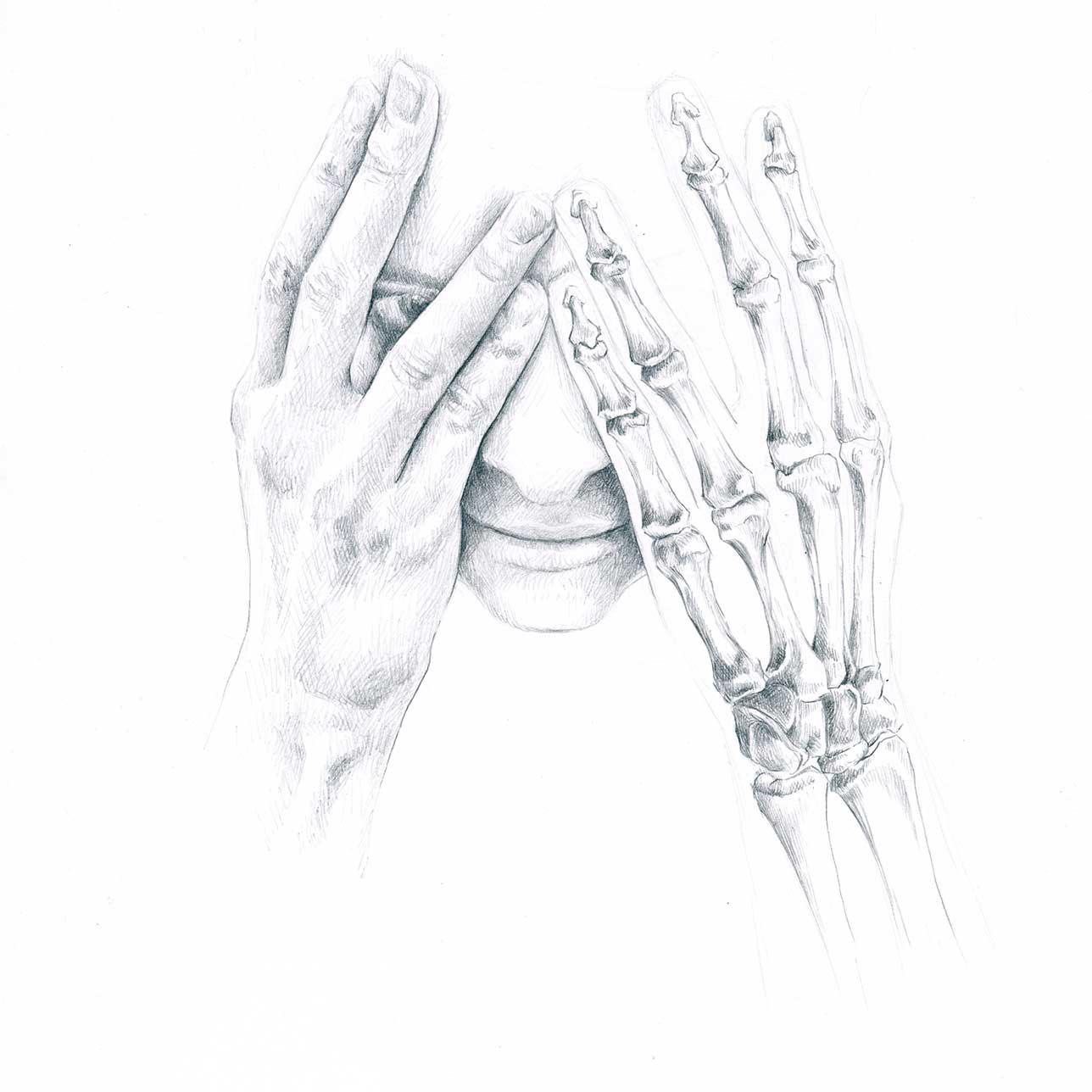 Anatomie, Hände, Bleistiftstudie